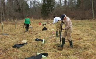 Amherst Streamside Tree Buffer Program